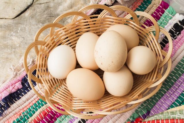 カゴに入った卵 生卵 赤卵