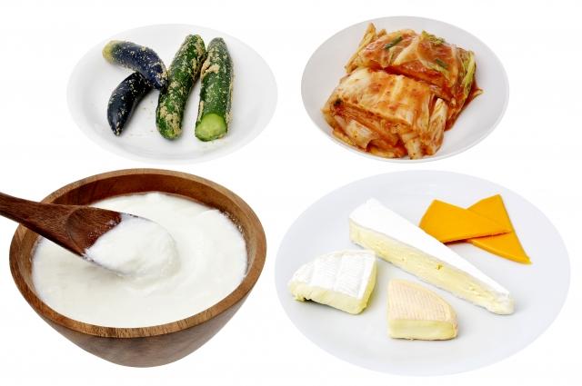 発酵食品 ヨーグルト ぬか漬け チーズ キムチ