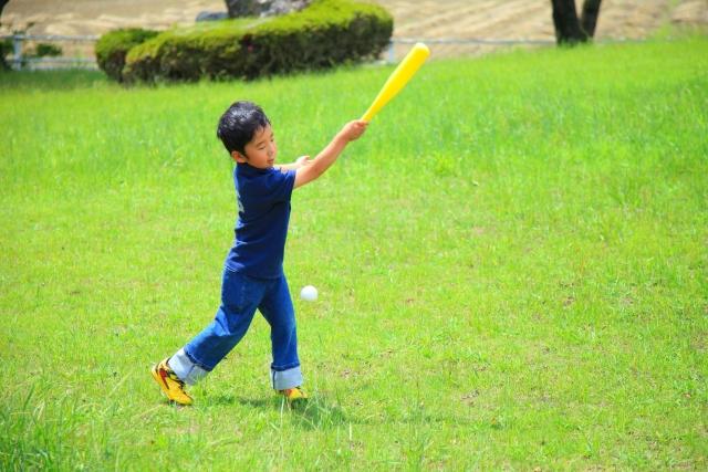子供 小学生 男の子 バッド ボール 野球 芝生