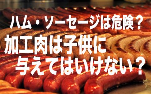 ソーセージ 加工肉 添加物