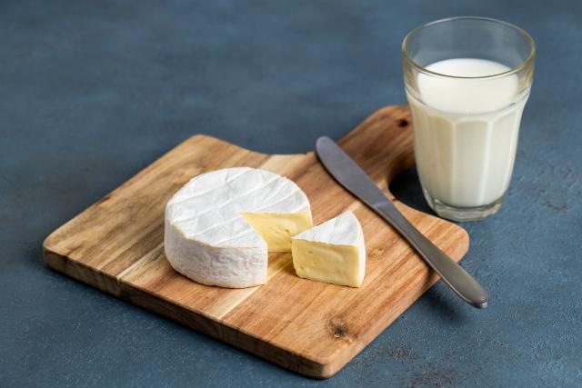 牛乳 乳製品 チーズ カマンベール
