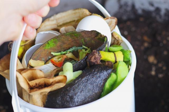 アボカドの皮 生ゴミ 野菜くず バケツ 土